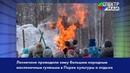 Лесничане проводили зиму большим народным масленичным гуляньем в Парке культуры и отдыха
