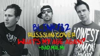 Blink-182 What's My Age Again (На русском, Bad Malmi)