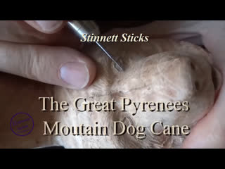 The Great Pyrenees Walking Cane-How