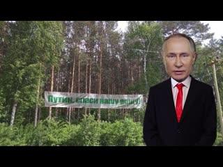 Обращение В.В7 Путина к защитникам Берёзовой рощи в районе Краснолесье Екатеринбурга
