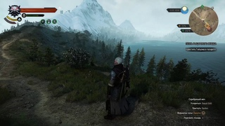 The Witcher 3: Wild Hunt #30