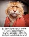 Светлана Зеленкова фото №6