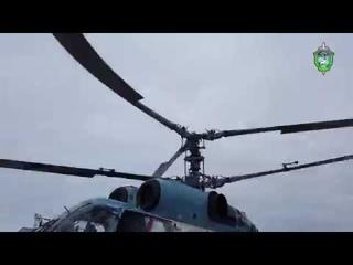 Спецназ ФСБ на днях освободил сотни крабов