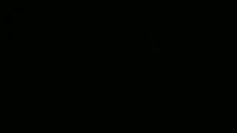 Don Omar Conor McGregor 720HD mp4