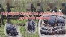 Погибший солдат не должен стать добычой кабанов. Talyshistan Tv 27.10.2020 News