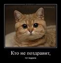 Личный фотоальбом Pasha Шумского