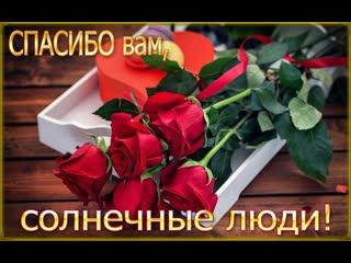 Моим друзьям с любовью, цветочного настроения,вам!