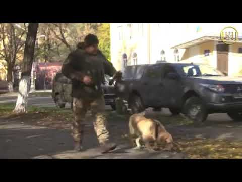 Спецоперация СБУ в Краматорске завершилась