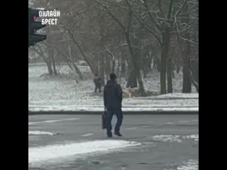 Зимой косят траву? Видео снято в Бресте недалеко от гимназии №6