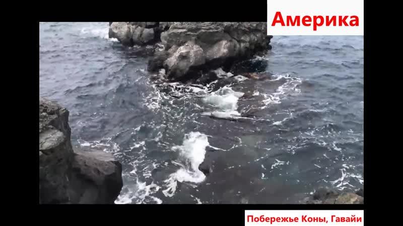 Побережье Коны Гавайи Америка
