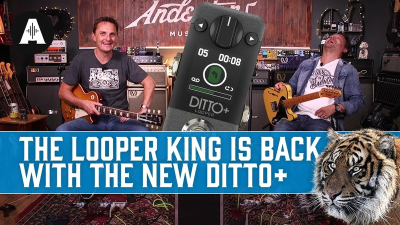 New TC Electronic Ditto | The Iconic Mini Looper Pedal, Now With Next-Level Upgrades!