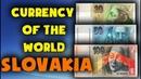 Currency of koruna