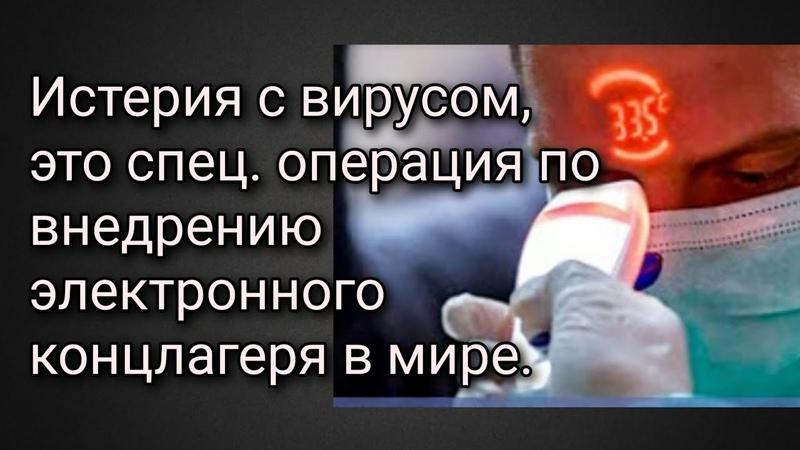 Госдума приняла закон о тотальном контроле над лояльностью граждан