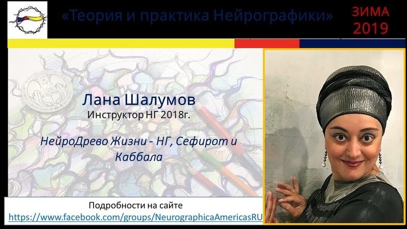 Лана Шалумов НейроДрево Жизни НГ Сефирот и Каббала