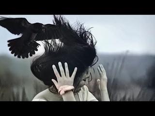 Очень Опасные птицы для человека.Нападения птиц.Это интересно знать.