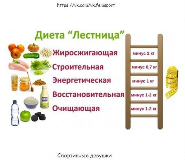 Диета Лесенка Меню Отзывы Фото