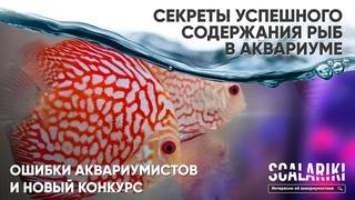 Секреты успешного содержания аквариумных рыб простыми словами. Ошибки аквариумистов