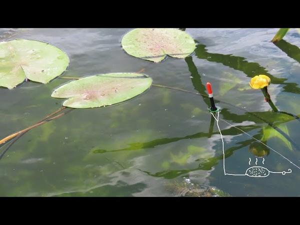 ПОРОЛОНОВАЯ убийца карася снасть на поплавочную удочку и скользящий поплавок с кормушкой