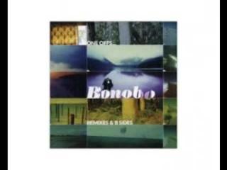 Bonobo - The Plug (Quantic Mix)