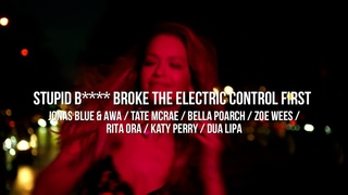 Stupid Bitch Broke The Electric Control First (Marc Johnce Mashup)