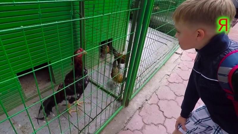 ПОЕЗДКА В АЛМАТЫ Казахстан блог в горах Чимбулак Коктобе Зоопарк канатная дорога