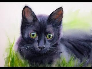 Black Cat in Watercolors Painting Demonstration