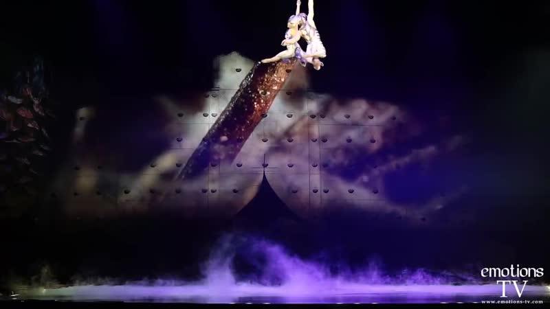 OVO le spectacle du Cirque du Soleil en représentation au Sud de France Arena de Montpellier