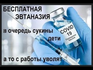 """В России создали """"моду"""" на вакцинацию, ей следуют даже беременные женщины."""