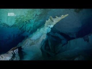 Чудеса голубой планеты 6 серия Северная Америка