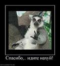 Личный фотоальбом Александра Куткина