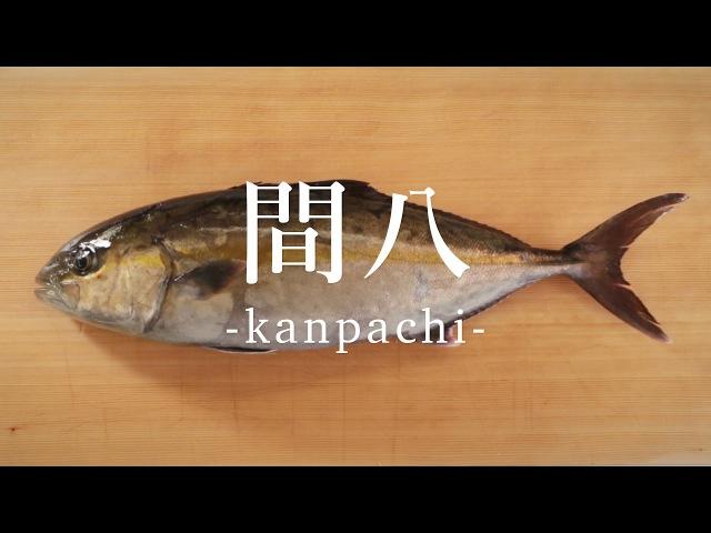 間八(かんぱち)のさばき方 - How to filet Greater Amberjack -|日本さばけるプロジェクト
