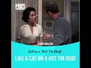 Idioms in movies: Like a cat on a hot tin roof (Cat on a Hot Tin Roof)