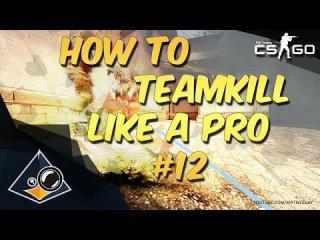 CS:GO - How to teamkill like a Pro #12