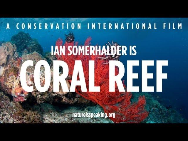 Nature Is Speaking Ian Somerhalder is Coral Reef Conservation International CI
