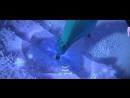 Frozen - Let It Go (Arabic) SubsTrans _ ملكة الثلج - أطلقي سركِ