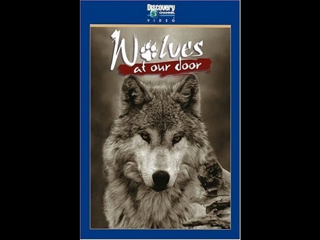 Волки за порогом Wolves at our doors 1999