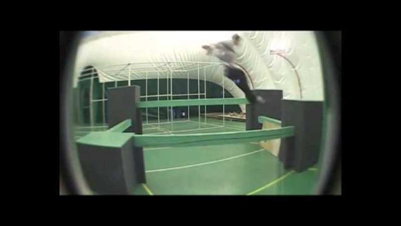 Erovikov Blade Vlad 2011 gym.