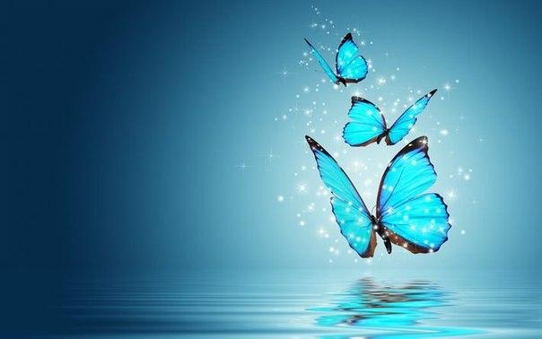Обои На Телефон Андроид Бабочки Бесплатно
