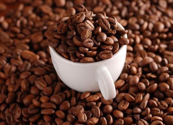 если марагоджип кофе фото ней широко
