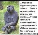 Фотоальбом Дмитрия Хвостикова