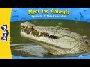 Meet the Animals 3: Nile Crocodile | Level 2 | By Little Fox