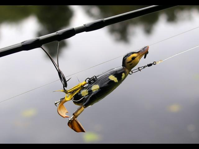 3D Suicide Duck Samobójcza kaczka w akcji