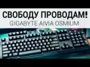 Игромир 2014 Механическая клавиатура GIGABYTE Aivia Osmium