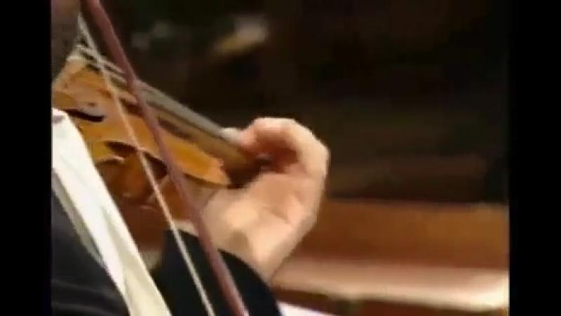 Vivaldi Concerto in d 'per Pisendel' by Giardino Armonico