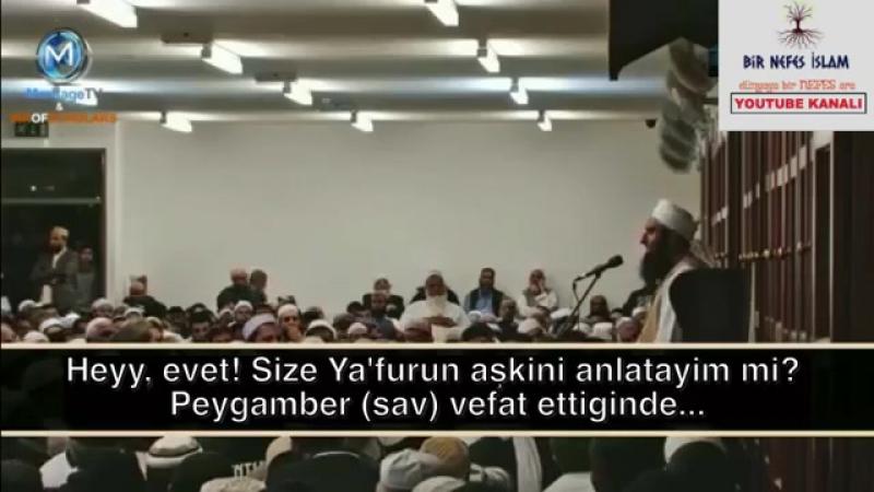 Deve ve eşeğin Peygamber sav aşkı Subhanallah ^^Asr ı Saadet^^ Tariq Jameel