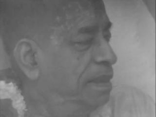 """""""Совершенные вопросы совершенные ответы"""": О негативе со стороны общества, о мантре Харе Кришна, о Шриле Прабхупаде."""