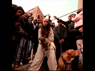 Aaliyah feat. dmx come back in one piece