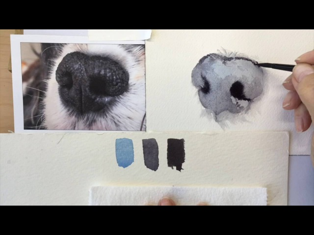 Рисуем нос собаки How to paint a dog's black nose