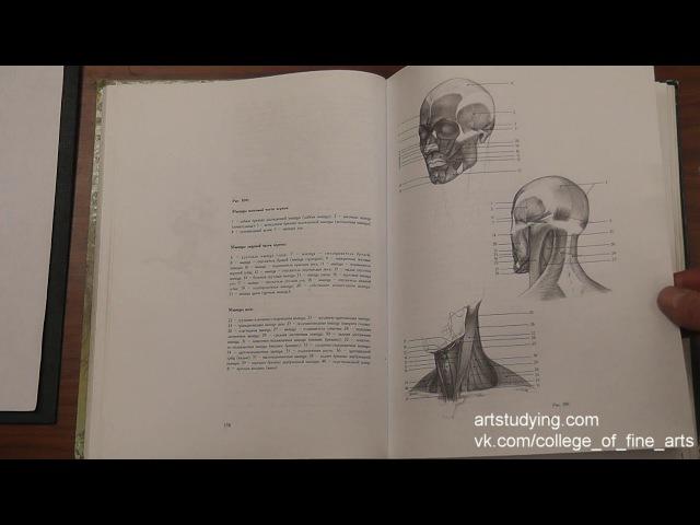 Обзор учебников рисунка Н Ли 3 серия