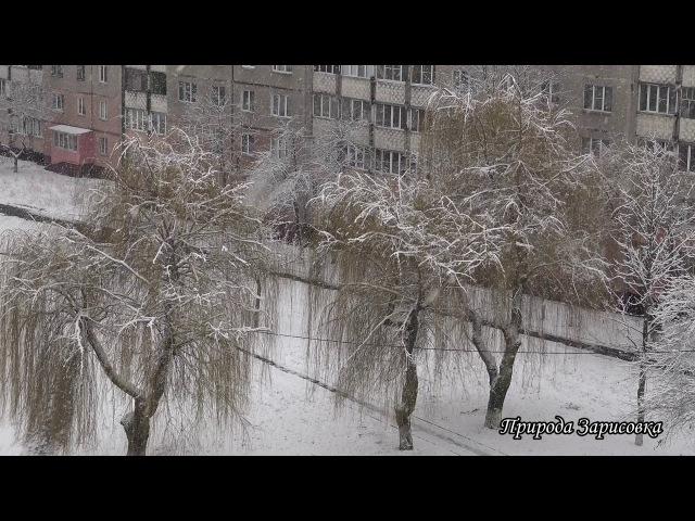 🌠 Леди Винтер ~ КРАСАВИЦА Зима со СНЕГОПАДОМ ~ Красивое видео о ЗИМЕ вид из окна🌠
